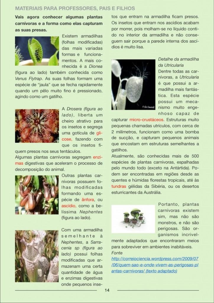 Newsletter_FevereiroMarco-14
